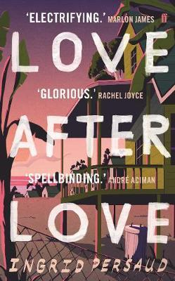 Love After Love: The most electrifying novel you will read all year by Ingrid Persaud
