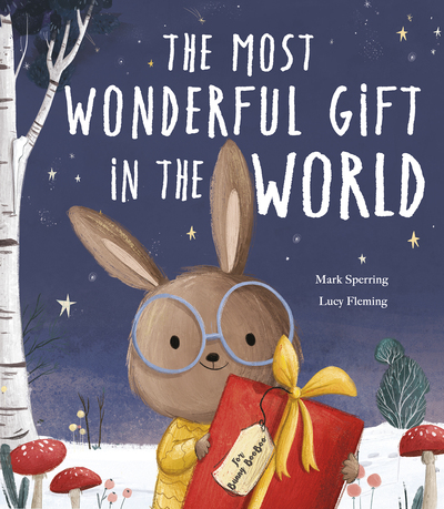 The Most Wonderful Gift in the World by Mark Sperring