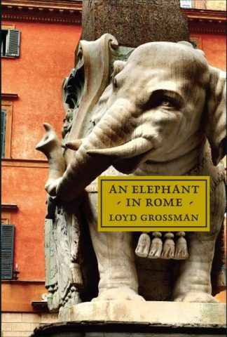 An Elephant in Rome: Bernini, The Pope and The Making of the Eternal City by Loyd Grossman