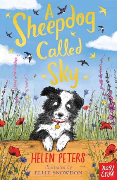 A Sheepdog Called Sky by Helen Peters