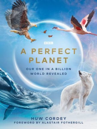 A Perfect Planet by Huw Cordey