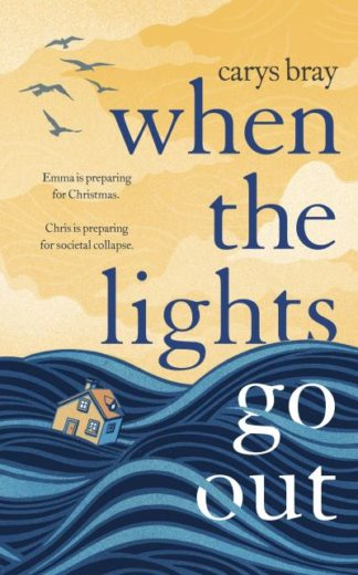 When the Lights Go Out by Carys Bray