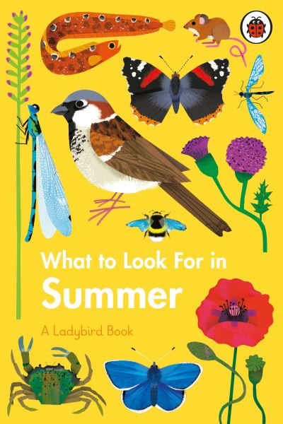 What to Look For in Summer by Elizabeth Jenner