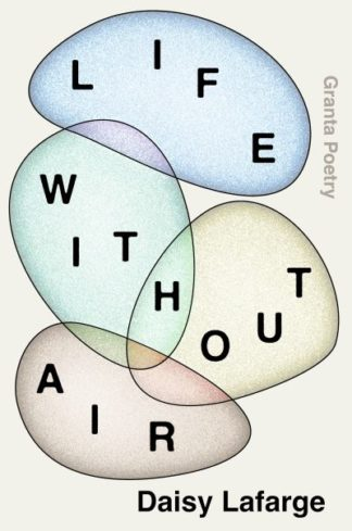 Life Without Air by Daisy Lafarge