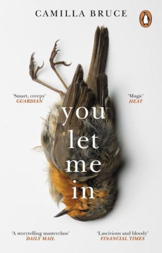 You Let Me In: The acclaimed, unsettling novel of haunted love, revenge and the  by Camilla Bruce