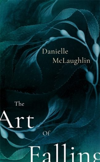 The Art of Falling by Danielle McLaughlin