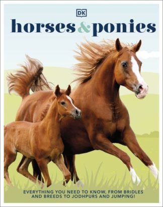 Horses & Ponies: Everything You Need to Know, From Bridles and Breeds to Jodhpur by  DK