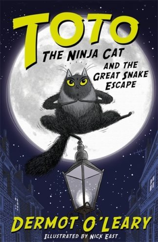 Toto Ninja Cat & Great Snake Escape by Dermot O'Leary