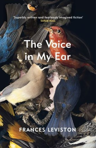 The Voice in My Ear by Frances Leviston