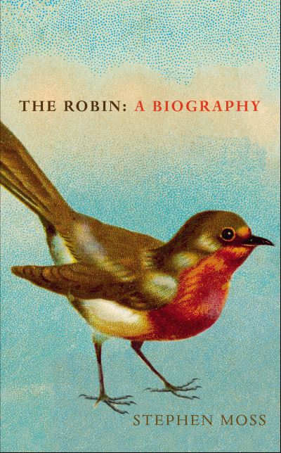 The Robin by Stephen Moss