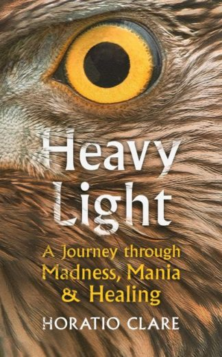Heavy Light: A Journey Through Madness, Mania and Healing by Horatio Clare