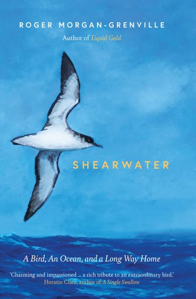 Shearwater: A Bird, an Ocean, and a Long Way Home by Roger Morgan-Grenville