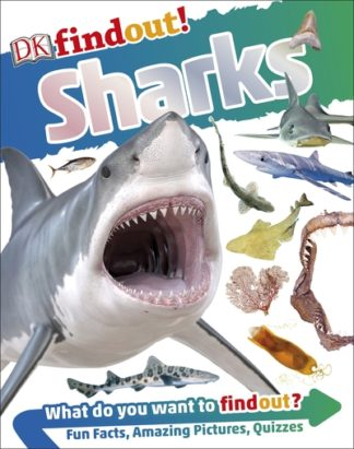 Sharks by  DK