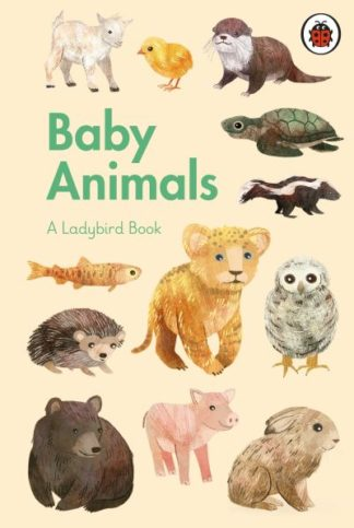 A Ladybird Book: Baby Animals by