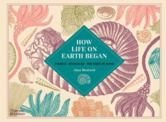 How Life on Earth Began: Fossils * Dinosaurs * The First Humans by Aina Bestard
