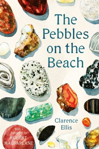 The Pebbles on the Beach: A Spotter's Guide by Clarence Ellis