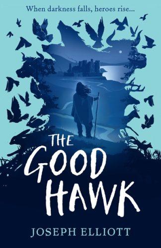 Good Hawk by Joseph Elliott