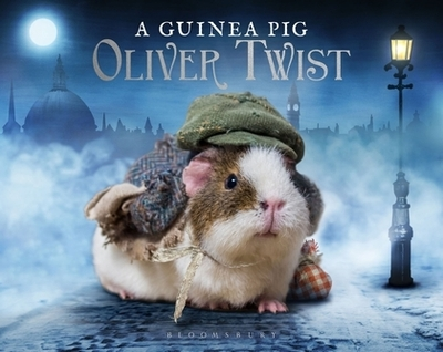Guinea Pig Oliver Twist by