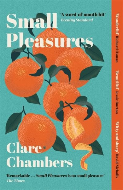 Small Pleasures: Longlisted for the Women's Prize for Fiction 2021 by Clare Chambers