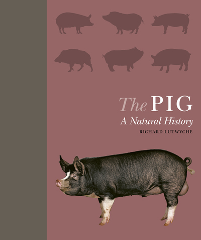 The Pig: A Natural History by Richard Lutwyche