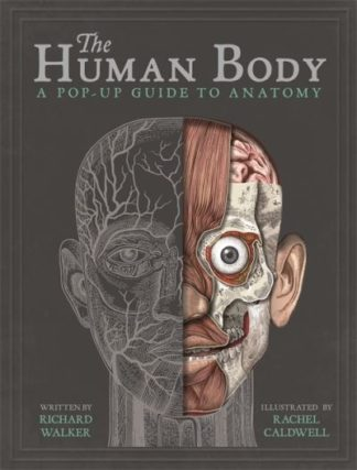 The Human Body: A Pop-Up Guide to Anatomy by Richard Walker