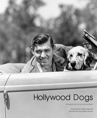Hollywood Dogs by Gareth Abbott