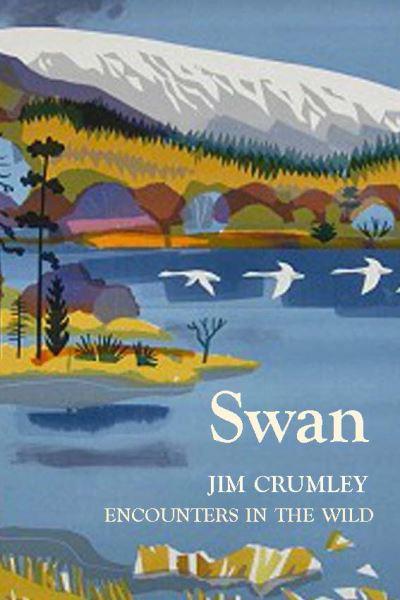 Swan by Jim Crumley