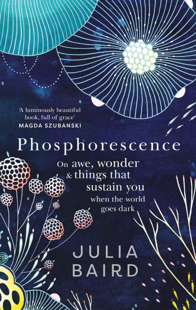 Phosphorescence: On awe, wonder & things that sustain you when the world goes da by Julia Baird