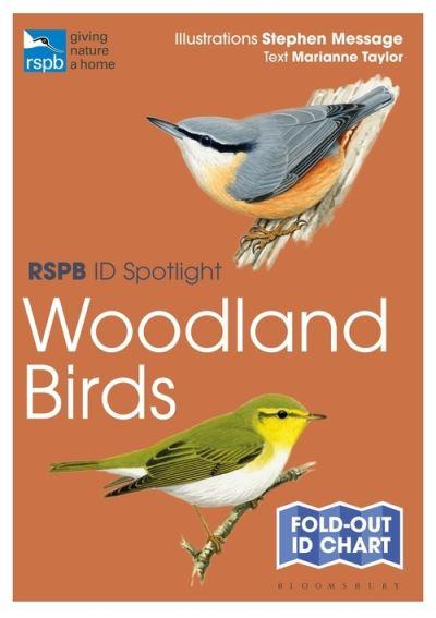 RSPB ID Spotlight - Woodland Birds by Marianne Taylor