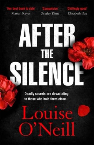 After the Silence: The An Post Irish Crime Novel of the Year by Louise O'Neill