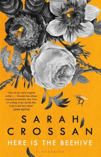 Here is the Beehive: Shortlisted for Popular Fiction Book of the Year in the AN  by Sarah Crossan