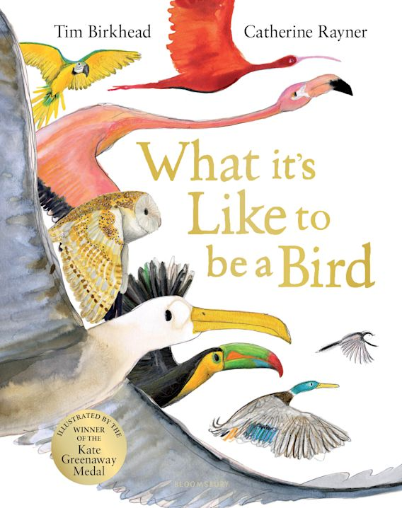 What it's Like to be a Bird by Tim Birkhead